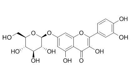 槲皮素-7-葡萄糖苷; 槲皮素-7-O-beta-D-吡喃葡萄糖苷