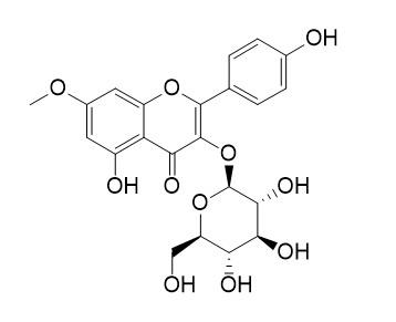 Rhamnocitrin 3-glucoside