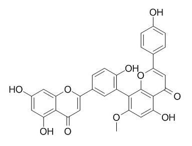 苏铁双黄酮