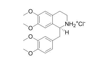 塩酸 パパベリン