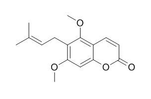 Toddaculine