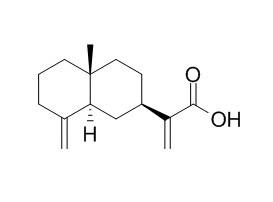beta-木香酸