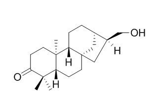 对映-17-羟基-3-贝壳杉酮