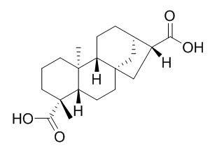 ent-Kauran-17,19-dioic acid